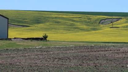 Idaho spring farmland