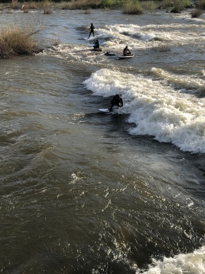 No ocean? No problem! Surf the river!